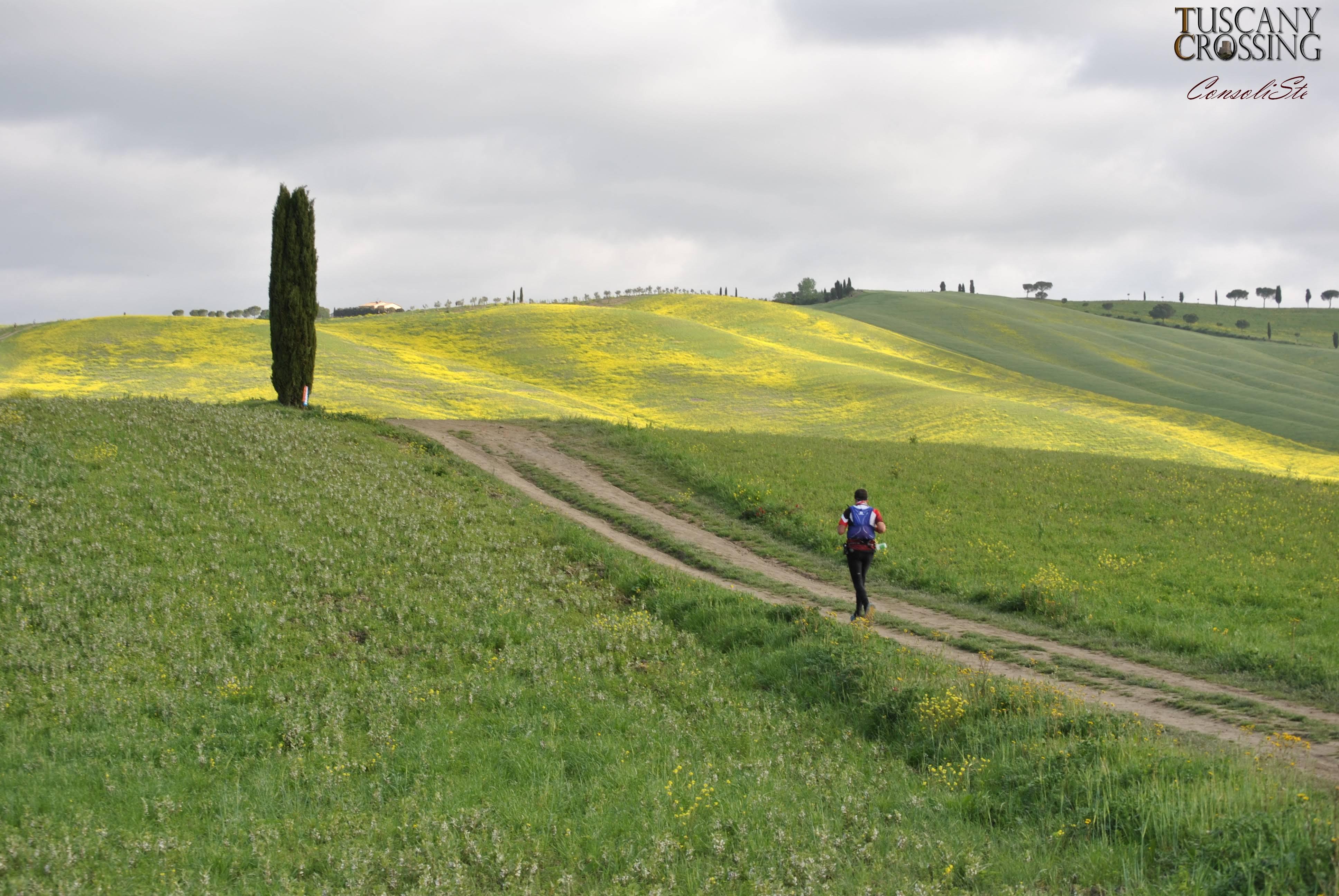 Tuscany Crossing VR
